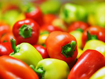 Fresh sweet peppers. Vegetable background Royalty Free Stock Photography