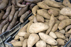 Fresh Sweet Potatoes for Sale Stock Images
