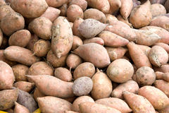 Fresh Sweet Potatoes for Sale Royalty Free Stock Photo