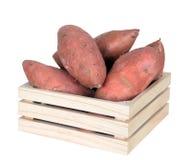 Fresh sweet potatoes Royalty Free Stock Image