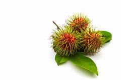 Fresh sweet rambutan,tropical fruit. Fresh sweet rambutan,tropical fruit in Thailand Royalty Free Stock Image
