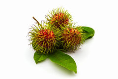 Fresh sweet rambutan on white background,tropical fruit. Fresh sweet rambutan on white background,tropical fruit in Thailand Royalty Free Stock Images
