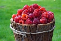 Fresh sweet raspberries. Basket of fresh sweet raspberries Royalty Free Stock Photos