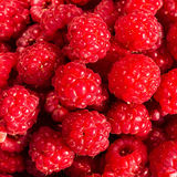 Fresh sweet raspberries close up. Raspberry fruit background mac Royalty Free Stock Photo