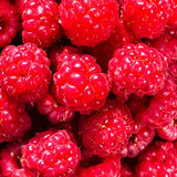 Fresh sweet raspberries close up. Raspberry fruit background mac Royalty Free Stock Image
