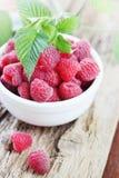 Fresh, sweet raspberry Royalty Free Stock Image