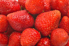 Fresh sweet ripe strawberry Royalty Free Stock Photos
