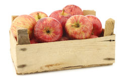 Fresh sweet small apples in a wooden crate Stock Image