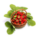 Fresh sweet strawberries in basket, isolated on white. Stock Photo