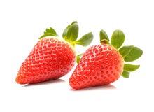 Fresh sweet strawberry royalty free stock photo