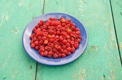 Fresh sweet summer raspberry in blue ceramic plate Stock Photo