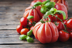 Fresh sweet tomato and basil on the wooden table Stock Photos