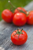 Fresh sweet tomato Royalty Free Stock Photography