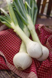 Fresh Sweet Vidalia Onions Royalty Free Stock Photos
