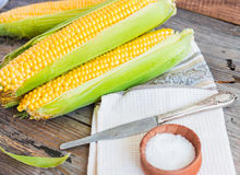 Fresh sweet yellow corn on wooden table, selective focus, closeu Royalty Free Stock Photography