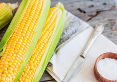 Fresh sweet yellow corn on wooden table, selective focus, closeu Stock Photography