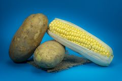 Sweetcorn cob and potatoes on a square of hessian. Fresh sweetcorn cob and potatoes on a square of hessian isolated on blue background stock photography
