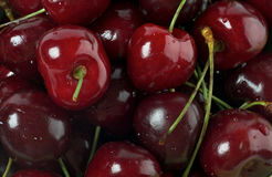 Fresh Swet Cherry background Royalty Free Stock Photo
