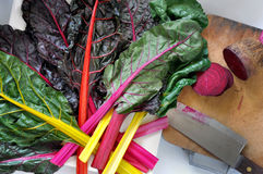 Fresh Swiss Chard and Beetroot on Cutting Board Royalty Free Stock Photography