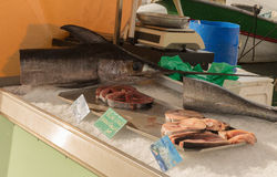 Fresh Swordfish for sale. Caught and sold in the Sanary Sur Le Mer fish market Royalty Free Stock Photography