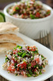 Fresh tabouleh salad. Fresh bulgur tabouleh salad in white bowl and ingredients Royalty Free Stock Images