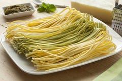 Fresh Tagliolini bicolore on a dish Stock Photos