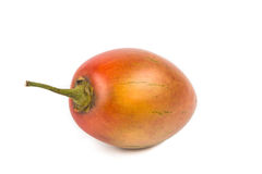 Fresh tamarillo fruits also known as tomato with white background Royalty Free Stock Images