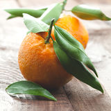 Fresh tangerine. With leaves on table Royalty Free Stock Photo
