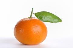 Fresh tangerine Stock Photo
