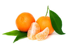 Fresh tangerine Royalty Free Stock Photos