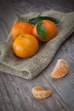 Fresh tangerine Stock Image