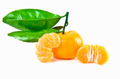 Fresh tangerine Royalty Free Stock Photography