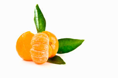 Fresh tangerine Stock Images