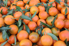 Fresh tangerine. Fruit in the market Royalty Free Stock Photo