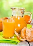 Fresh tangerine juice Royalty Free Stock Photography