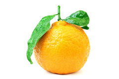Fresh tangerine with leaf. Stock Photo