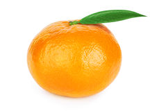 Fresh tangerine with leaves Royalty Free Stock Images