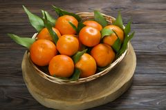 Fresh tangerine oranges on a wooden table. Peeled mandarin. Halves, slices and whole clementines closeup. Basket of fresh mandarin oranges, whole, halved & Royalty Free Stock Photo