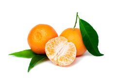 Fresh tangerine Royalty Free Stock Images