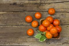 Fresh tangerines in a bowl Stock Images
