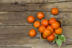 Fresh tangerines in a bowl Royalty Free Stock Images