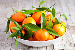 Fresh tangerines in a bowl Stock Image