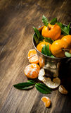 Fresh tangerines in a bucket of leaves. Stock Image