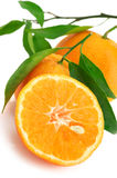 Fresh tangerines close-up. Close-up of whole and cut fresh tangerines on white background Stock Photo