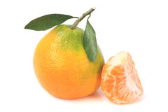 Fresh Tangerines Green Leafs Royalty Free Stock Photos