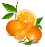 Fresh tangerines with green leaves and orange. Stock Photo