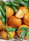 Fresh tangerines with leaves. Close up. Background Stock Images