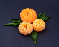 Fresh tangerines with leaves on dark background. Ripe tasty mandarines with green leaves on dark background Stock Photos