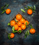 Fresh tangerines with leaves on dark grunge background Stock Image