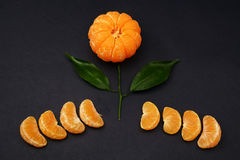 Fresh tangerines with leaves in the form of a flower on dark background. Ripe tasty mandarines with green leaves on dark background Royalty Free Stock Images